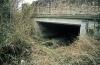 Query Bridge 1 B-Arm (2)